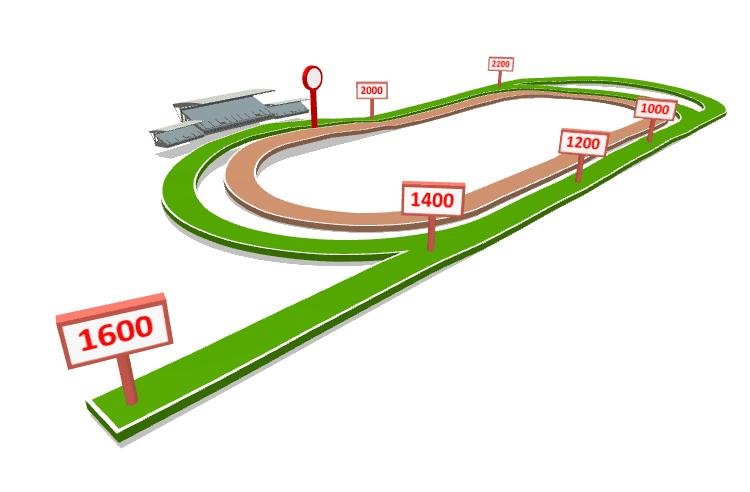KRANJI Race Results