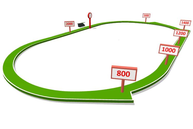 Horse Racing Results For Saturday, 09th June 2018   Australia
